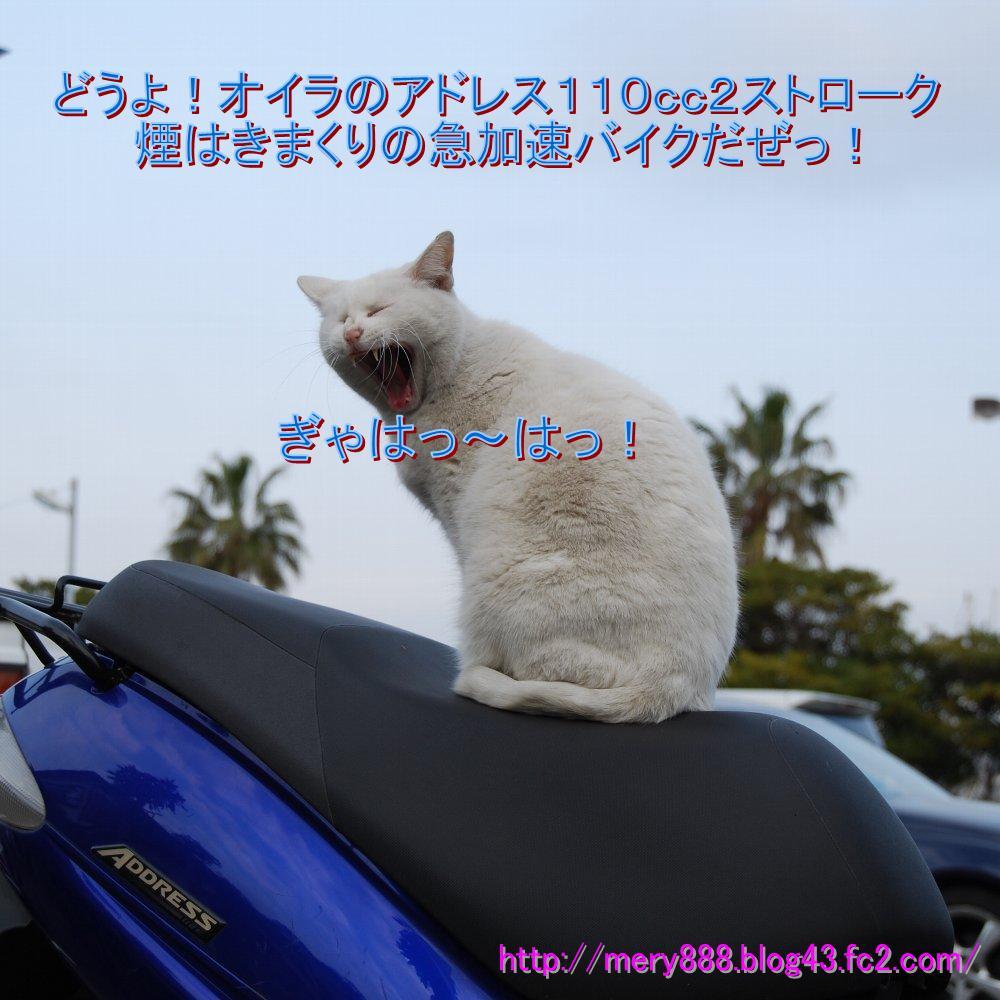 アドレス110_001