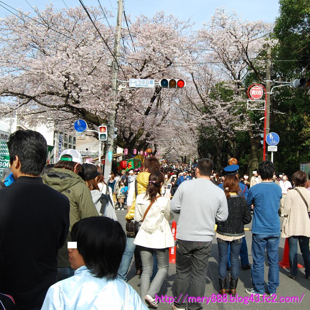 桜祭り002_2009