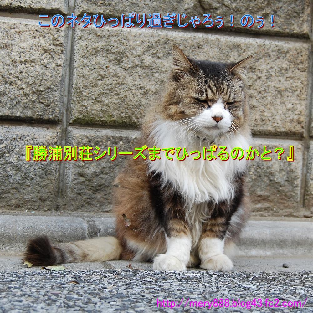 東京湾岸警察003