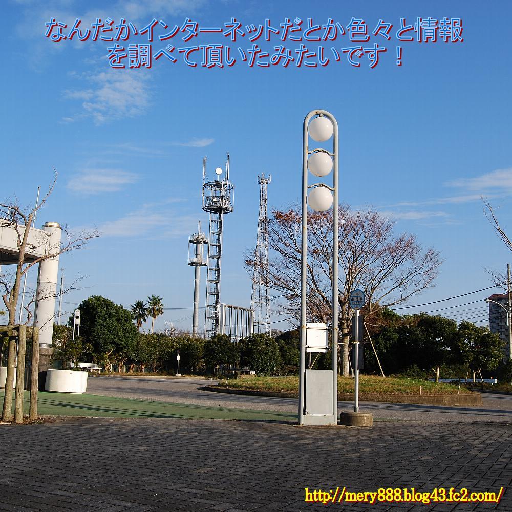 勝浦市役所004
