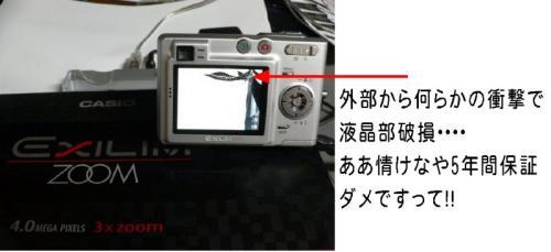 20051231101027.jpg