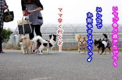 00_20090528192731.jpg