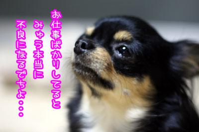 02_20090705122459.jpg