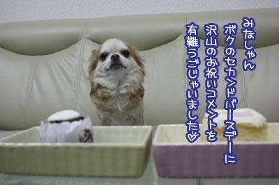 02_20090813050339.jpg