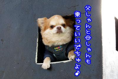 03_20090424184857.jpg