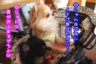 03_20090515210401.jpg