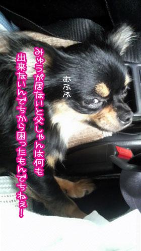 03_20090802224701.jpg