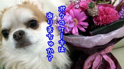 04_20090430230127.jpg