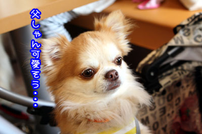 04_20090515210958.jpg