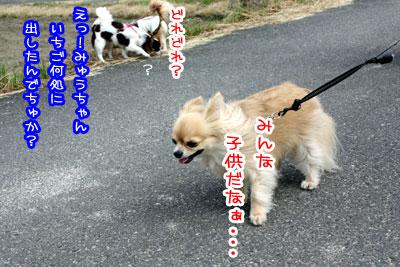 04_20090528192834.jpg