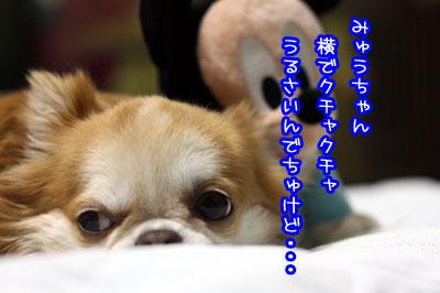 04_20090703203650.jpg