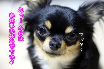 04_20090705122510.jpg