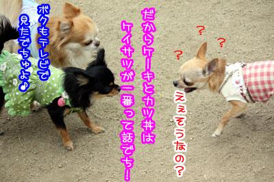 05_20090511170757.jpg