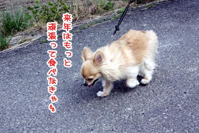 07_20090528192756.jpg