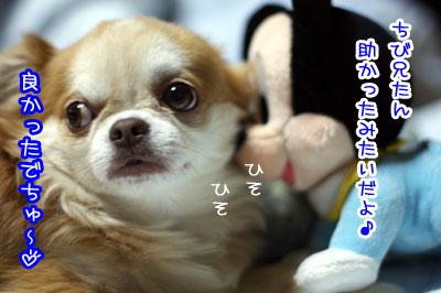 07_20090705122529.jpg