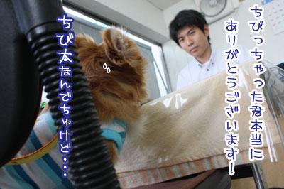 08_20090721101033.jpg