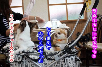 09_20090531141527.jpg