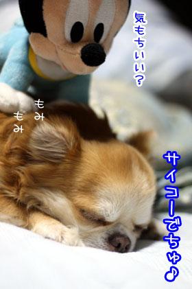 09_20090703203722.jpg