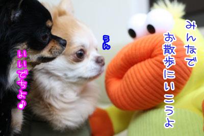 100_20090402143920.jpg