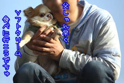 106_20090408003646.jpg