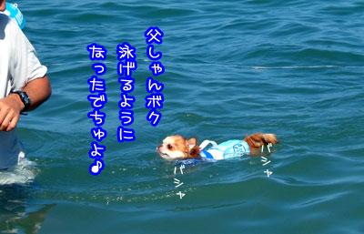 10_20090524040255.jpg