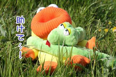 111_20090402144256.jpg