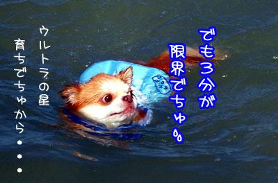 11_20090524040303.jpg