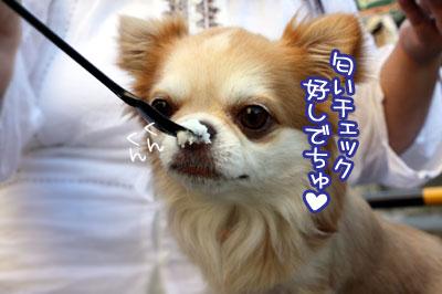 11_20090906123232.jpg