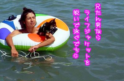 12_20090524040345.jpg