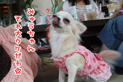 13_20090706120830.jpg