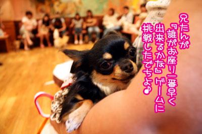 17_20090821000147.jpg