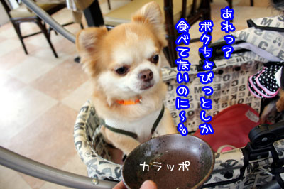 19_20090531145924.jpg