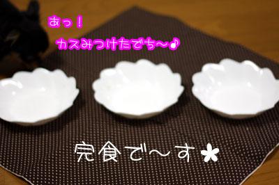 23_20090219205005.jpg