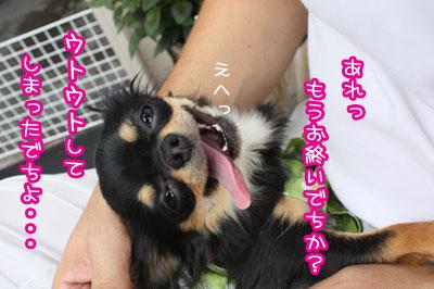 26_20090719105625.jpg
