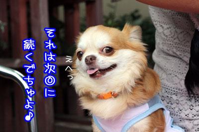 29_20090706132449.jpg