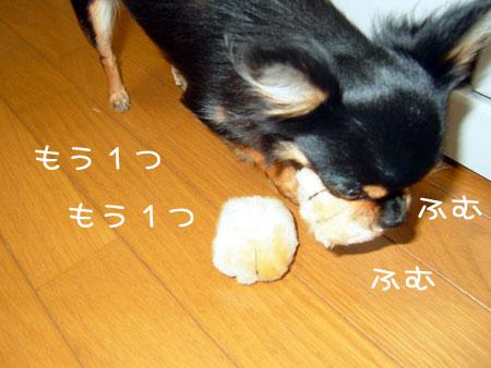 2_20081126181931.jpg