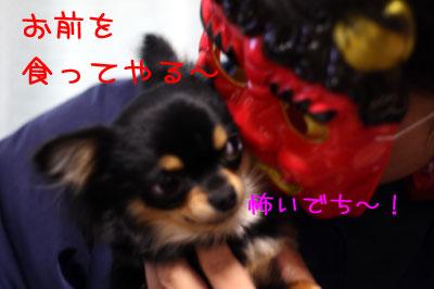 2_20090206001019.jpg