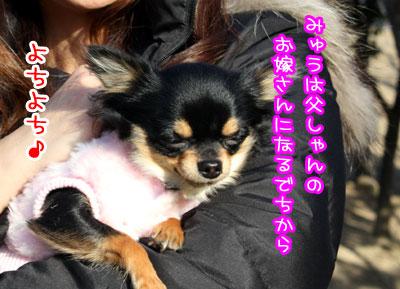 3_20090213224950.jpg