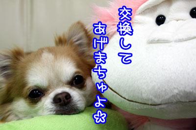 44_20090506232438.jpg