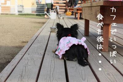 53_20090518004320.jpg