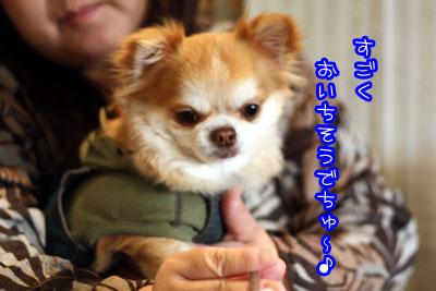 700_20090325185330.jpg