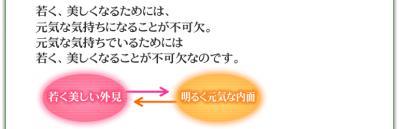 wakaku.jpg