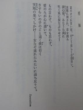 09080305.jpg