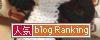 banner_04.gif