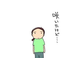 ひまわり4