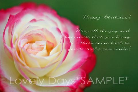 19-birthday-rose.jpg
