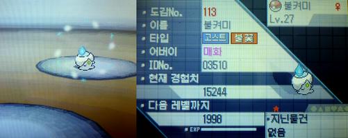 20111123 韓国色ヒトモシ