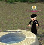 水の精霊の泉の水