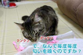 ジャガー洗濯ネット3