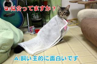 ジャガー洗濯ネット5